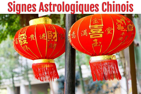 Signe astrologique chinois